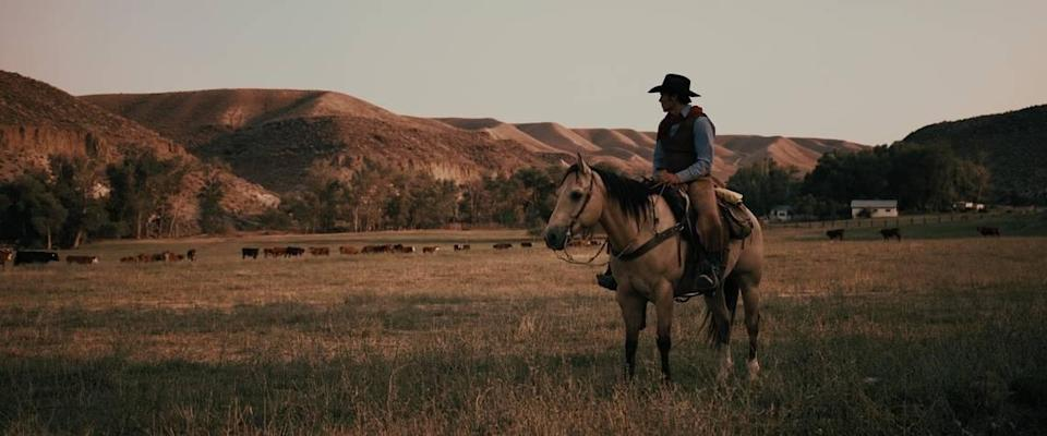 """Actor Jay Pickett sits on a horse in a field of cattle in this footage from his film """"Treasure Valley."""" Pickett, who wrote and starred in the movie, died on set unexpectedly."""