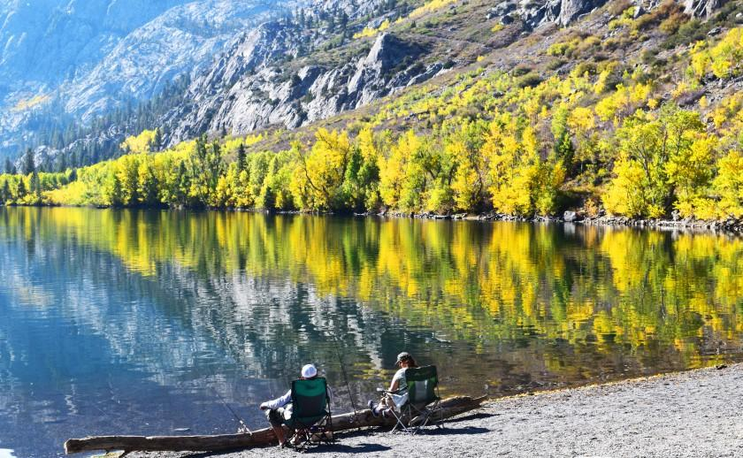 Colorful trees provide beautiful backgrounds all along June Lake Loop, off of Hwy. 395. This scene was at Silver Lake. Taken 10/12/20