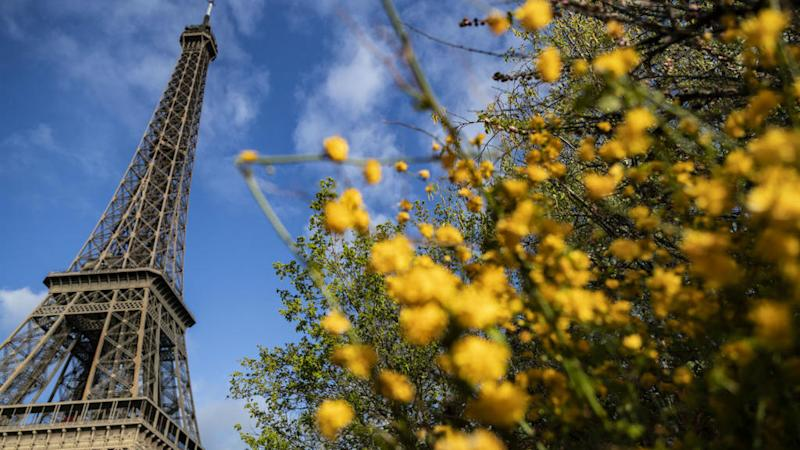 Paris among five French cities to ban the use of pesticides