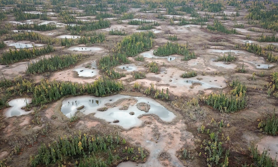 """<span class=""""caption"""">The United Nation Environment Program is leading the Global Peatlands Initiative to save peatlands and help keep climate change in check. </span> <span class=""""attribution""""><span class=""""source"""">(Bin Xu)</span>, <span class=""""license"""">Author provided</span></span>"""