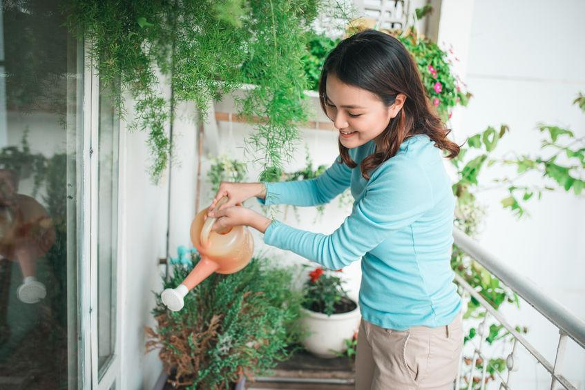 Woman watering plant in container on balcony garden