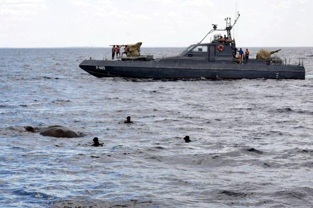 Sri Lankan navy divers attempt to rescue the elephant. (Photo by Ari Lanka Navy Medical Unit HA/REX/Shutterstock)