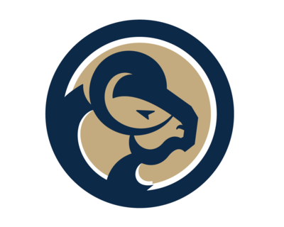 Los Angeles Rams Roster Overview (Pre-Week 12)