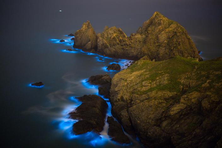 """On summer nights, the waters surrounding Taiwan's Matsu Islands cast an eerie blue glow. The phenomenon, known as China's """"blue tears,"""" is actually caused by a bloom of tiny, bioluminescent creatures called dinoflagellates. Tourists from all over China come to view the twinkling seascape.The bloom in the East China Sea may be beautiful, but it's also toxic. And it's growing bigger every year, a recent study finds. [Gallery: Eye-Catching Bioluminescent Wonders]""""People think this is romantic and beautiful to watch at night,"""" Chanmin Hu, an oceanographer at the University of South Florida and study co-author, told Live Science, """"It's toxic.""""Hu and his team of researchers used satellite data to track the size of the bloom over time. By analyzing nearly 1,000 satellite images from the past 19 years, the researchers were able to identify a signature unique to blue tears -- the wavelengths of light reflected by this particular creature, but not others. """"It's like a fingerprint,"""" Hu said. Using this fingerprint, they found that the bloom, which is typically seen near shore, is extending its reach into deeper waters.That's a problem for marine creatures.The blue tears phenomenon can poison sea life, from fish to sea turtles. The bloom can even make humans sick, Hu said. The dinoflagellates actually aren't toxic themselves -- until they begin chowing down, he said. Toxic algae is their food of choice, and as they eat, they release ammonia and other chemicals that poison the water around them. Not only that, but these creatures breathe oxygen until there's none left in the surrounding waters.""""The oxygen in the water is so low that many animals can die,"""" Hu said.The cause of blue tears isn't certain, but Hu and his colleagues think pollution from agriculture that funnels down the Yangtze River plays a major role. The river dumps fertilizer into the East China Sea, giving blue tears massive doses of the nutrients it needs to grow.Hu and his colleagues noticed that the size of th"""