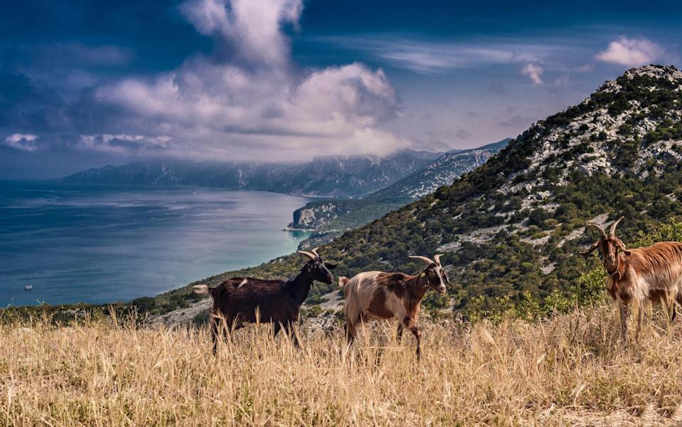 """""""I was searching for a defiantly rustic backwardness – goats bleating on hillsides, stone houses crumbling on the peripheries of vaguely cultivated fields, granite bluffs punching the sky"""" - getty"""