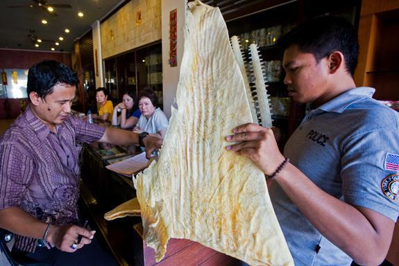 The WCS Wildlife Crimes Unit and Indonesian police bust Chinese traders with endangered whale shark fins, critically endangered sawfish and 15 kilograms of sea turtle meat.
