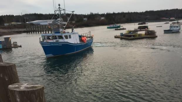 COVID vulnerable industries, like fish processing, are part of reason Charlotte County is vulnerable. (CBC - image credit)