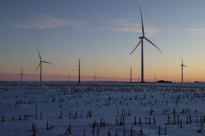 FILE PHOTO: A wind farm shares space with corn fields the day before the Iowa caucuses, where agriculture and clean energy are key issues, in Latimer, Iowa