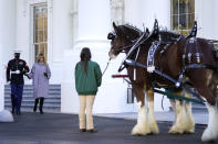 First lady Melania Trump walks to see the 2020 Official White House Christmas tree as it is presented on the North Portico of the White House, Monday, Nov. 23, 2020, in Washington. (AP Photo/Andrew Harnik)