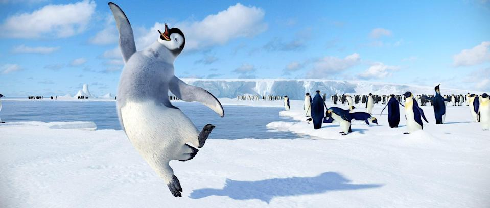 <p>Next up in the Winter Olympics: tap-dancing? In this cute animated flick set in the Antarctic, a young penguin shows off his moves by hoofing it on the ice.</p>