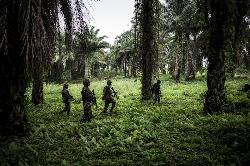 MONUSCO has around 17,000 members, making it one of the UN's biggest peacekeeping operations (AFP Photo/John WESSELS)