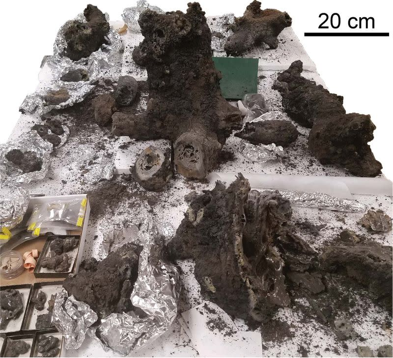 Primordial lightning strikes may have helped life emerge on Earth