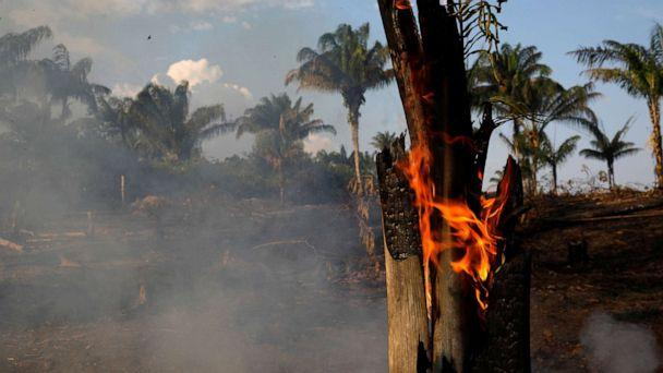 PHOTO: A tract of Amazon jungle is seen burning as it is being cleared by loggers and farmers in Iranduba, Amazonas state, Brazil August 20, 2019. (Bruno Kelly/Reuters)