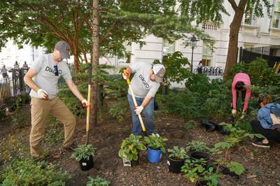 Employee volunteers working to beautify City Hall Park, with Partnerships for Parks.