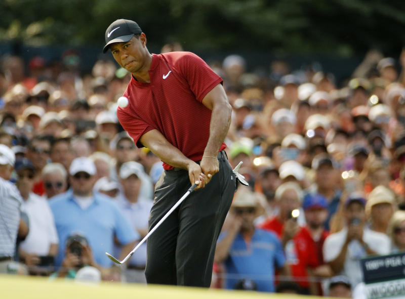 Tiger Woods chips onto 14th green during the final round of the PGA Championship golf tournament at Bellerive Country Club, Sunday, Aug. 12, 2018, in St. Louis. (AP Photo/Charlie Riedel)