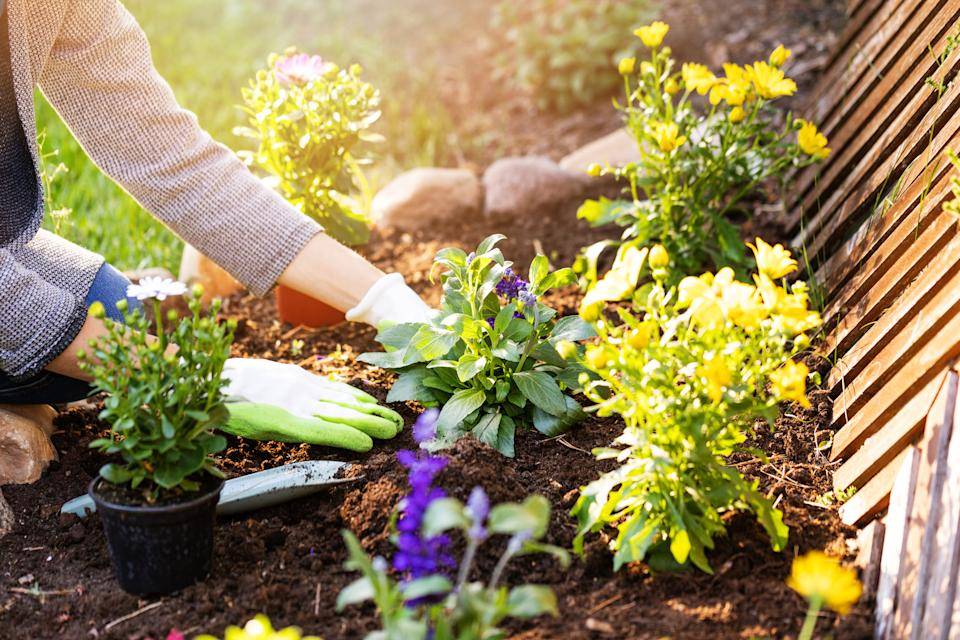 Brits are discovering a new found love for gardening.  (Getty Images)