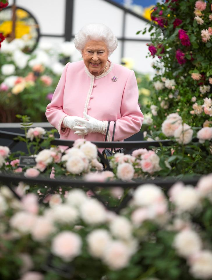 Britain's Queen Elizabeth looks at a display of roses on the Peter Beale roses display stand as she tours the Chelsea flower show in London, Britain May 21, 2018.  Richard Pohle/Pool via REUTERS