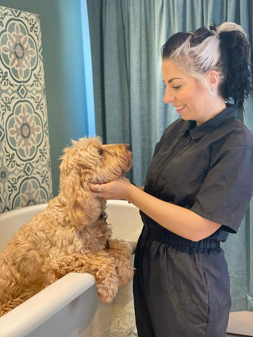 Pampering is available for pooches at the hotel. (Collect/PA Real Life)