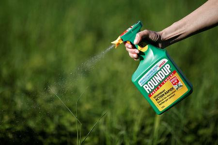 A woman uses a Monsanto's Roundup weedkiller spray without glyphosate in a garden in Ercuis near Paris