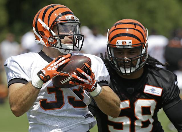 Cincinnati Bengals running back Rex Burkhead (33) catches a pass against middle linebacker Rey Maualuga (58) during the NFL football team's first practice at training camp, Thursday, July 24, 2014, in Cincinnati. (AP Photo)