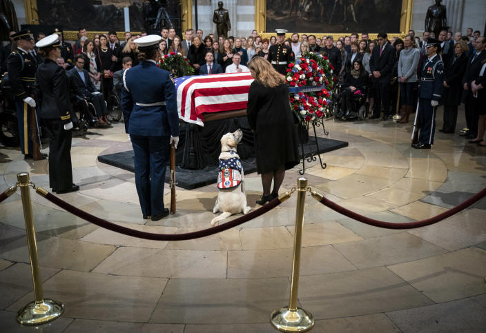 Sully, a yellow Labrador service dog for former President George H. W. Bush, sits near the casket of the late former President George H.W. Bush as he lies in state at the U.S. Capitol, December 4, 2018 in Washington, DC. (Photo: Drew Angerer/Getty Images)
