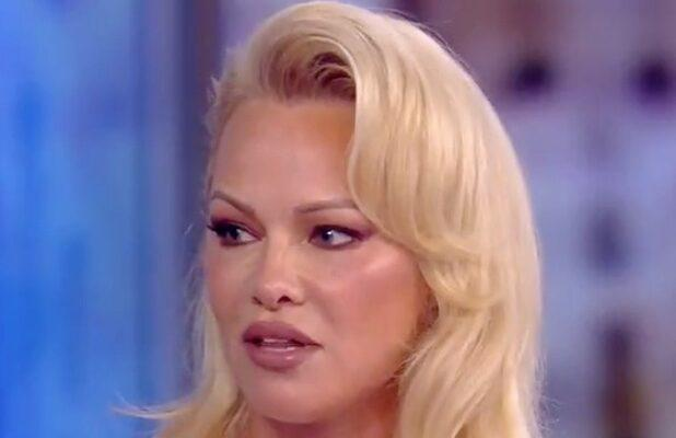 Pamela Anderson Defends WikiLeaks From Meghan McCain: 'How Many People Has the American Government Killed, Innocently?'