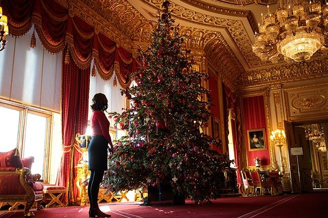 A big Christmas tree and decorated Windsor State Apartment