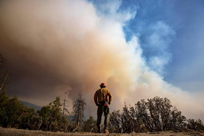 Sequoia National Forest, CA - September 16,2021: Sierra Cobras fire crew member Gustavo Cisneros keeps an eye on a hillside as flames roil the Sequoia National Forest on the Windy fire near the Tule River Reservation on Thursday, Sept. 16, 2021 in Sequoia National Forest, CA. (Brian van der Brug / Los Angeles Times)