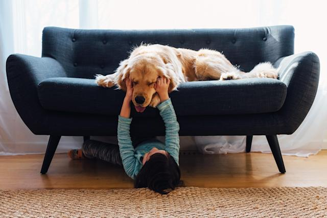 Young boy writes emotional tribute to his teacher's dog. (Photo: Elizabethsalleebauer/Getty Images)