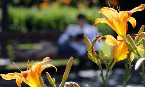 Flowers bloom in Gorky Park during the 2018 soccer World Cup in Moscow, Russia, Friday, July 13, 2018. (AP Photo/Frank Augstein)