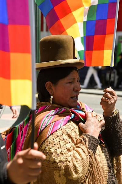 A supporter of Bolivian ex-President Evo Morales holds a Wiphala flag -- representing indigenous peoples -- in La Paz