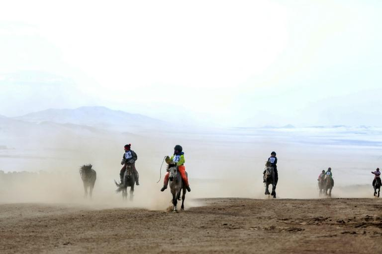 Children's light weight gives them an advantage in horse races in Mongolia that often run for 18 to 26 kilometres, among the longest on earth
