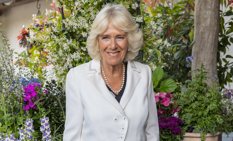 LOSTWITHIEL, ENGLAND - JULY 16: Camilla, Duchess of Cornwall attends a reception to celebrate the 50th Anniversary of His Royal Highness Chairmanship of the Duchy of Cornwall Princes Council at the Duchy of Cornwall Nursery during an official visit to Devon & Cornwall on July 16, 2019 in Lostwithiel, United Kingdom. (Photo by Mark Cuthbert/UK Press via Getty Images)