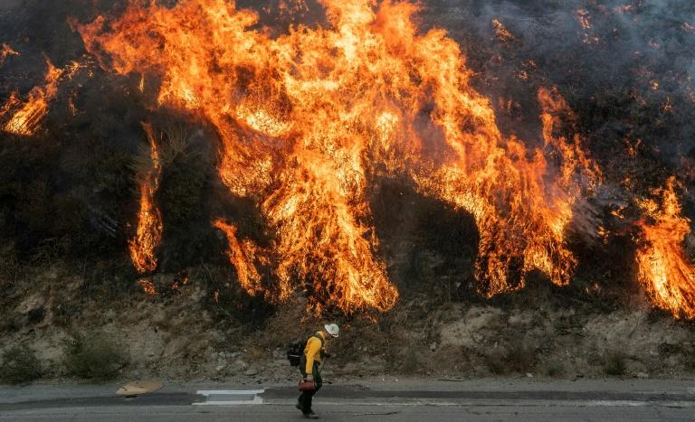 A firefighter walks near flames during the Saddleridge fire in southern California (AFP Photo/Josh Edelson)
