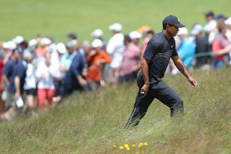 Jun 15, 2018; Southampton, NY, USA; Tiger Woods walks through the rough to the ninth green during the second round of the U.S. Open golf tournament at Shinnecock Hills GC - Shinnecock Hills Golf C. Mandatory Credit: Brad Penner-USA TODAY Sports