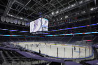 The Tampa Bay Lightning play the Chicago Blackhawks with no fans in attendance during the third period of an NHL hockey game Wednesday, Jan. 13, 2021, in Tampa, Fla. The Lightning are trying to help stop the spread of the coronavirus. (AP Photo/Chris O'Meara)