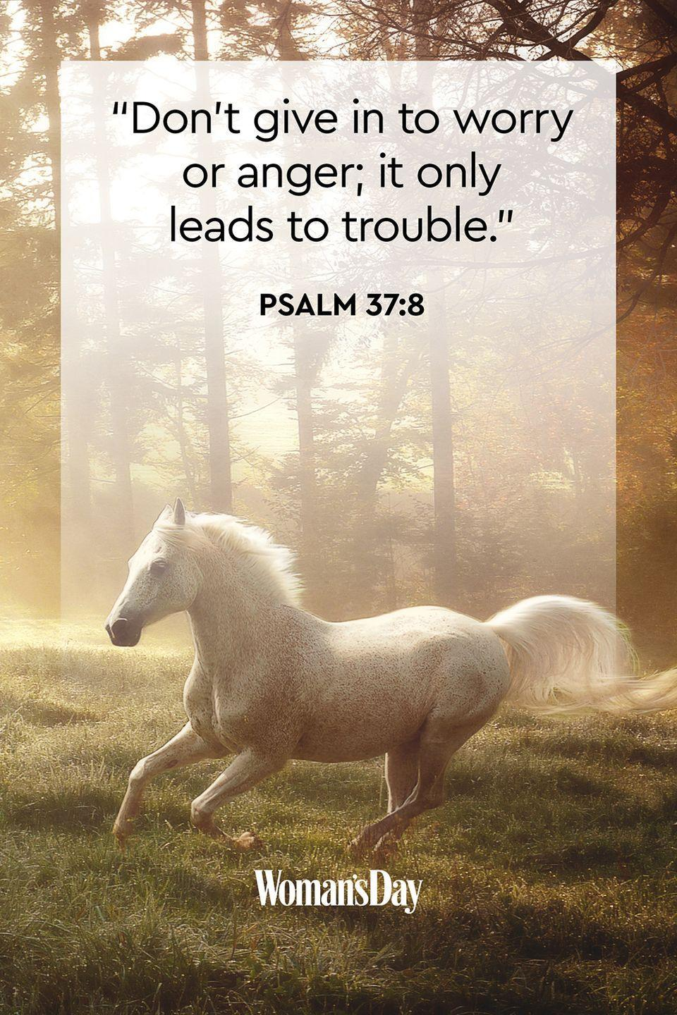 """<p>""""Don't give in to worry or anger; it only leads to trouble.""""</p><p><strong>The Good News</strong>: When you can act based on your negative emotions, you might make the wrong decisions, so take your time to calm down before doing anything. </p>"""