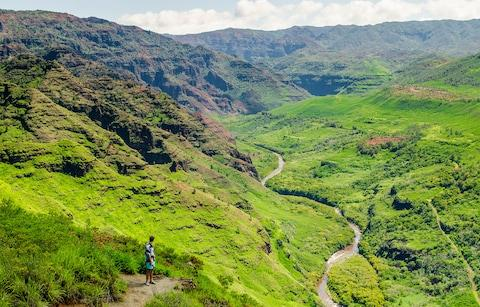Waimea Canyon State Park - Credit: Getty