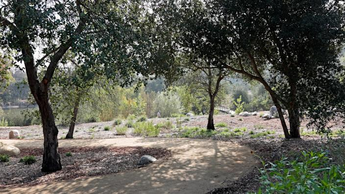 """One of three paths that guide visitors through the new oak woodland at Descanso Gardens. <span class=""""copyright"""">(Tom Politeo / For The Times)</span>"""