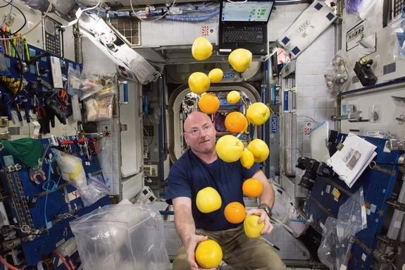 One-year-mission crewmember NASA astronaut Scott Kelly corrals the supply of fresh fruit that arrived on the Kounotori 5 H-II Transfer Vehicle (HTV-5) the day before, Aug. 24. Visiting cargo ships often carry a small cache of fresh food for cre