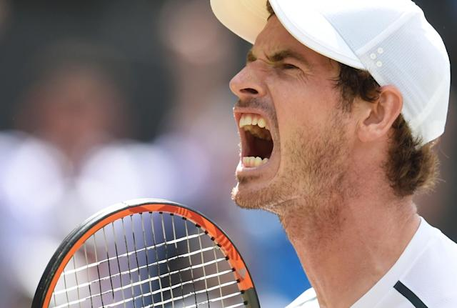 Pained: Andy Murray played on with an injury
