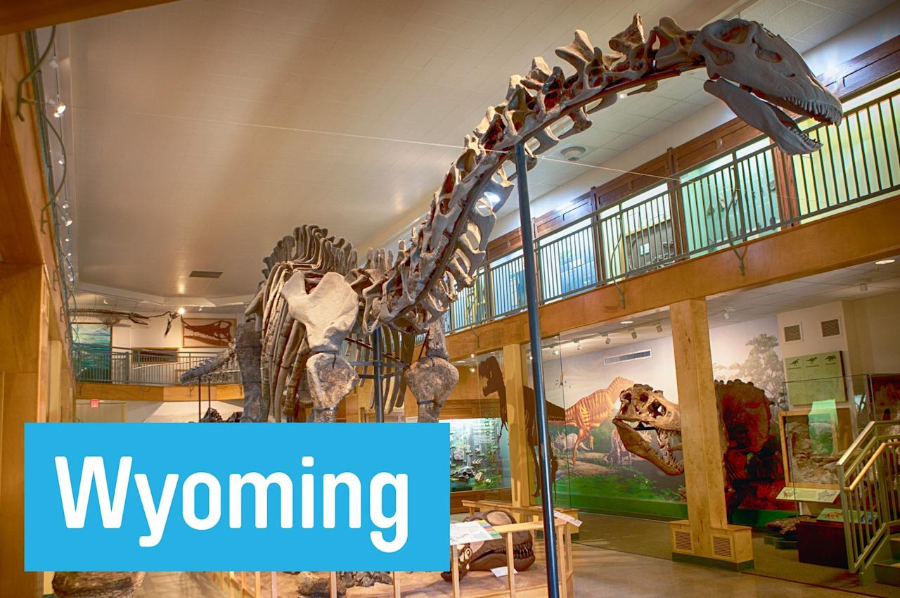 "Feed your inner paleontologist at the University of Wyoming's <a href=""http://www.uwyo.edu/geomuseum/"">Geological Museum,</a> in Laramie. Highlights include the 75-foot Apotosaurus skeleton and a chance to watch fossils being cleaned and prepped for possible display."