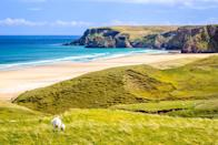 """<p>The white sands and blue waters of Tolsta beach on the Isle of Lewis.</p><p><a class=""""link rapid-noclick-resp"""" href=""""https://www.countrylivingholidays.com/tours/scotland-hebrides-islands-islay-mull-cruise"""" rel=""""nofollow noopener"""" target=""""_blank"""" data-ylk=""""slk:SEE BEAUTIFUL BEACHES BY ISLAND HOPPING"""">SEE BEAUTIFUL BEACHES BY ISLAND HOPPING</a></p>"""