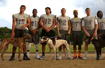 The Lyman Greyhounds with real greyhounds — Orlando Sentinel