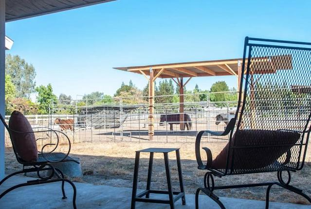 <p>The patio area with barbecue is a great place to kick back and relax. And if you want to take your relaxation to the next level, there's an in-house masseuse. (Airbnb) </p>
