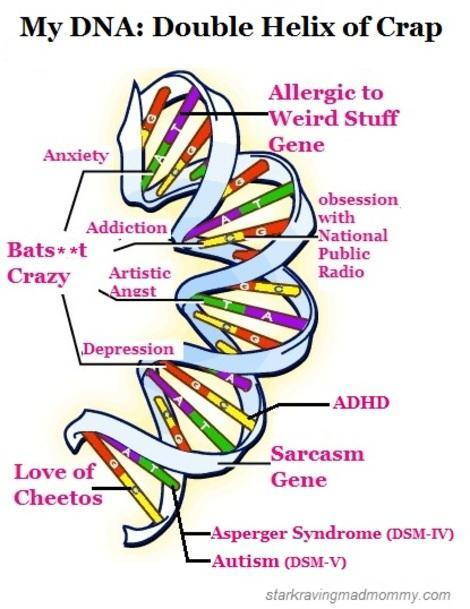 My DNA, more or less