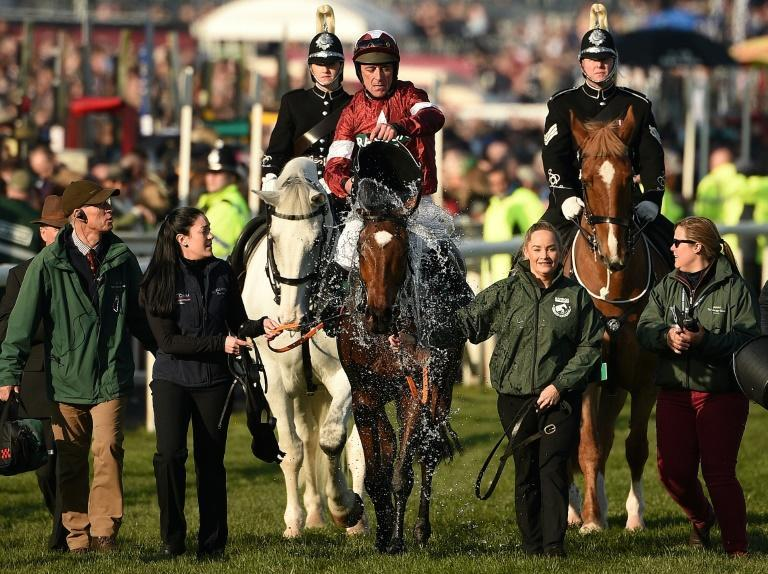 Cloth Cap is the favourite to succeed two-time Grand National winner Tiger Roll which will take place without spectators due to coronavirus protocols