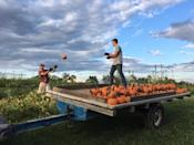 """<p>Better bring your camera! There will be plenty of photos ops at <a href=""""http://www.countrypumpkinsky.com/"""" rel=""""nofollow noopener"""" target=""""_blank"""" data-ylk=""""slk:Country Pumpkins"""" class=""""link rapid-noclick-resp"""">Country Pumpkins</a>, an activity- and animal-packed farm in <a href=""""https://go.redirectingat.com?id=74968X1596630&url=https%3A%2F%2Fwww.tripadvisor.com%2FTourism-g39344-Dry_Ridge_Kentucky-Vacations.html&sref=https%3A%2F%2Fwww.countryliving.com%2Flife%2Ftravel%2Fg21273436%2Fpumpkin-farms-near-me%2F"""" rel=""""nofollow noopener"""" target=""""_blank"""" data-ylk=""""slk:Dry Ridge, Kentucky"""" class=""""link rapid-noclick-resp"""">Dry Ridge, Kentucky</a>'s beautiful countryside. Once you've found the perfect pumpkin at their u-pick patch, your family can make your way over to their corn maze, hay maze, wagon ride, or petting zoo. </p><p><a class=""""link rapid-noclick-resp"""" href=""""https://go.redirectingat.com?id=74968X1596630&url=https%3A%2F%2Fwww.tripadvisor.com%2FAttractions-g39344-Activities-Dry_Ridge_Kentucky.html&sref=https%3A%2F%2Fwww.countryliving.com%2Flife%2Ftravel%2Fg21273436%2Fpumpkin-farms-near-me%2F"""" rel=""""nofollow noopener"""" target=""""_blank"""" data-ylk=""""slk:PLAN YOUR TRIP"""">PLAN YOUR TRIP</a><br></p>"""