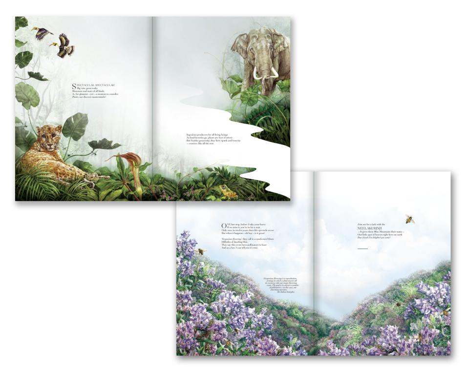 A sneak peek into one of the pages of Hidden Kingdom - a book of botanical illustrations consisting of both plants and animals