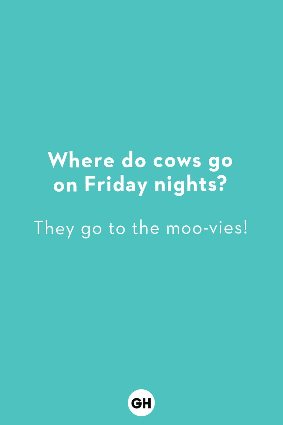 <p>They go to the moo-vies!</p>